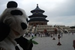Show Lessons, arts afternoon and The Temple of Heaven